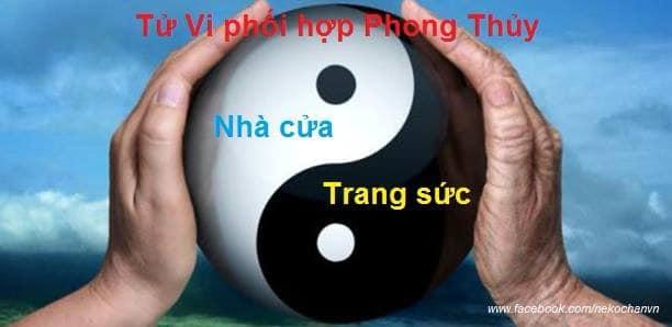 TỬ VI VÀ PHONG THỦY